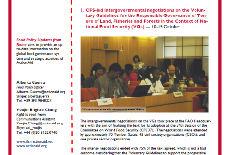 Food Policy Update from Rome - Issue 9, Nov 2011 | ActionAid