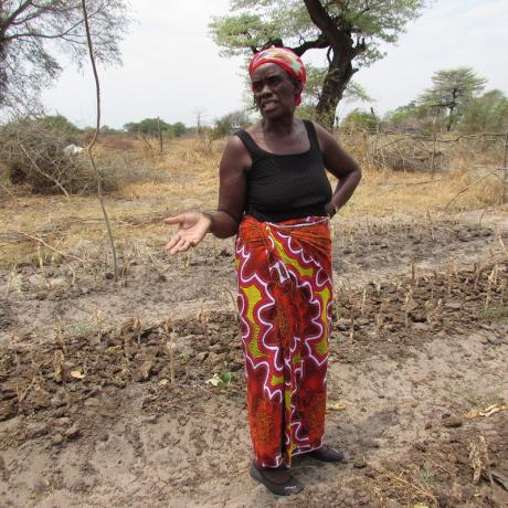 Patricia Musweu stands on her dry farm land