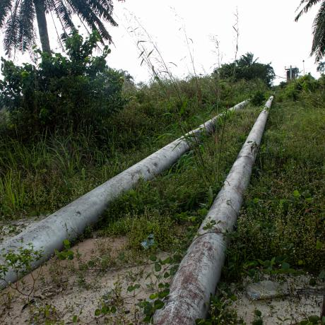 Oil pipelines in the Niger Delta