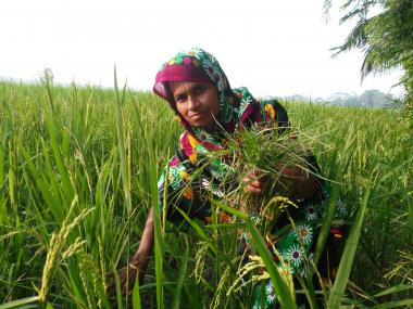 Nasima, 35, is a smallholder farmer.